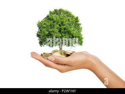 Close up of female hand holding stack of golden coins with small tree growing out of it - Stock Photo