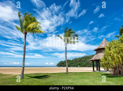 Two palm trees on a white sand beach at Kota Kinabalu, Borneo, Malaysia on the edge of the South China Sea - Stock Photo