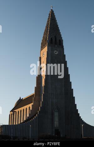 Hallgrímskirkja Church, at sunrise in Reykjavík, Iceland. Clear blue sky/background to extend and add content. - Stock Photo