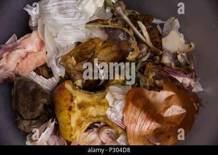 Concept with food leftovers in the garbage. Half eaten apple in the trash can. Above food garbage in the trash can - Stock Photo