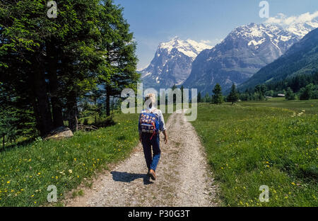 A female hiker on a leisurely day hike follows a wide trail that leads toward the Wetterhorn mountain peak from the alpine village of Grindelwald in the Bernese Oberland region of Switzerland. Hiking in that European country is a way of life and almost a national sport. More than 37,000 miles (59,545 kilometers) of trails crisscross the mountainous nation, all marked with directional and distance signs. Trekking in the Swiss Alps is most enjoyable in summer after most of the snow has melted and the wildflowers are in bloom. - Stock Photo