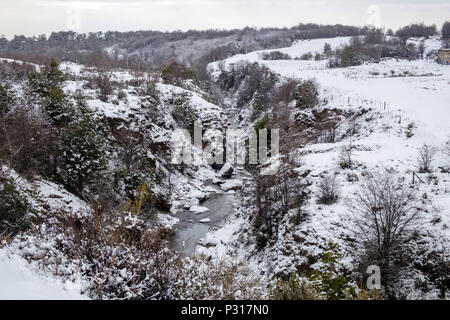 A small stream flows below a high river bank. Snow has changed the landscape between Ushuaia and the national park of Tierra del Fuego. - Stock Photo