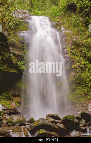 The Lost Waterfalls are located on the slopes of Volcan Baru near Boquete in Panama. There are three waterfalls on this hike. The views and waterfalls - Stock Photo