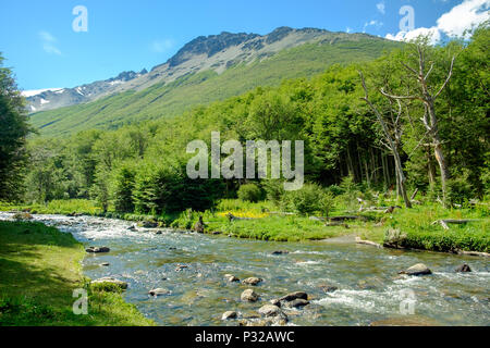 Río Chico streams through the Andorra Valley of Ushuaia in Tierra del Fuego. The river lies in the middle of a supreme nature scenery. - Stock Photo