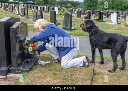 Warrington, UK, 17 June 2018 - Father's Day - Mature blonde lady joins many others by placing flowers on their deceased father's grave. Fox Covert, Warrington, Cheshire, England, UK Credit: John Hopkins/Alamy Live News - Stock Photo
