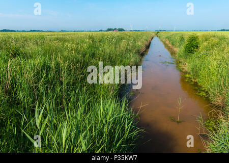 Landscape of agricultural East Frisia, Lower Saxony, Germany - Stock Photo