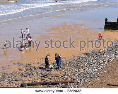 Families with children playing and beach combing on the wet sand in Cromer seaside resort in Norfolk england uk - Stock Photo