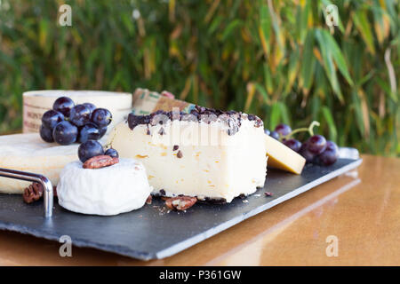A platter with various cheeses like Gruyère, goat cheese decorated with grapes and nuts. These foods are eaten for dessert or after a hearty meal. - Stock Photo