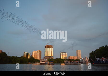 Austin, Texas, USA. 17th June, 2018. People go batty for one of Austin's local attractions. Sunday evening at sunset, millions of Mexico free-tailed bats leave their perch under the Congress Avenue Bridge over Lady Bird Lake in downtown Austin, Texas to feed on insects. Thousands of onlookers line the bridge to watch the spectacle which happens nightly from about March to November. The flight pattern can be up to 2-mile high. Credit: Glenn Ruthven/Alamy Live News - Stock Photo