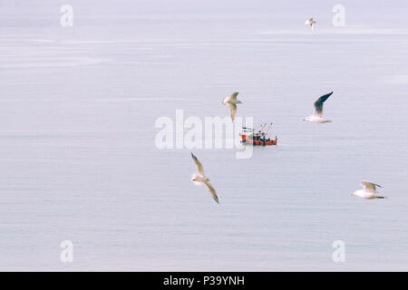 Abstract, minimal, surreal background - small boat sails quietly in the middle of sea, in the foreground flying seagulls. Toned in soft pastel colors  - Stock Photo