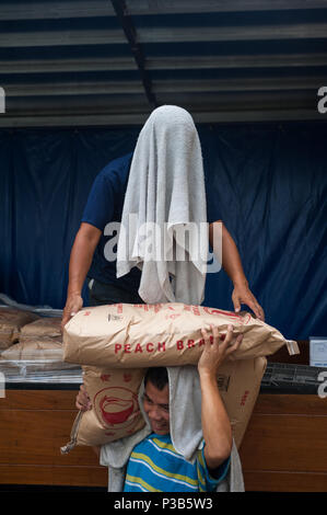 Singapore, Republic of Singapore, workers unload flour sacks from a truck - Stock Photo