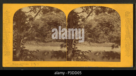 264 Scene on the Des Plaines River, by P. B. Greene 3 - Stock Photo