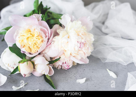 Pink White Pastel Peony Flowers On Grey Concrete Background. Wedding, birthday, valentine's day, gift or women's day concept - Stock Photo