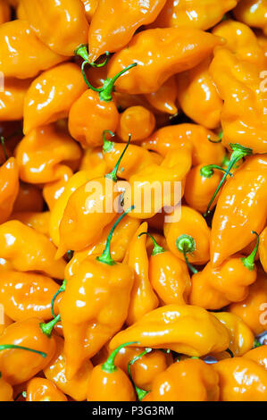 Food background - Habanero chili  peppers - Stock Photo