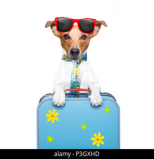dog on holidays with luggage ,funny tie and hat - Stock Photo