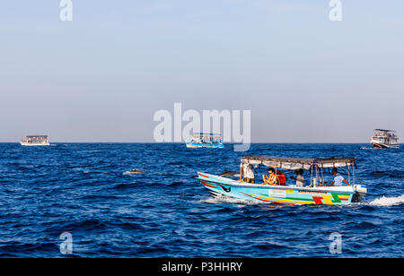 Tourist whale watching boats at sea packed with sightseers looking for blue whales and dolphins off Weligama, southern Sri Lanka on a sunny day - Stock Photo