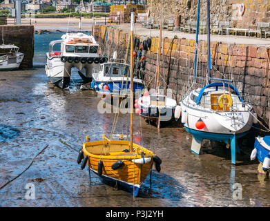Wooden sailing boat and other boats in mud at low tide, with Seafari Explorer catamaran, North Berwick harbour, East Lothian, Scotland, UK - Stock Photo