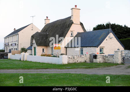 For sale sign on a thatched cottage in the village of Marloes Pembrokeshire Wales, UK  KATHY DE WITT - Stock Photo