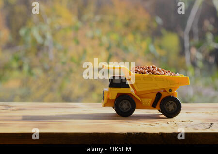 A small yellow toy truck is loaded with brown grains of buckwheat. A car on a wooden surface against a background of autumn forest. Extraction and tra - Stock Photo