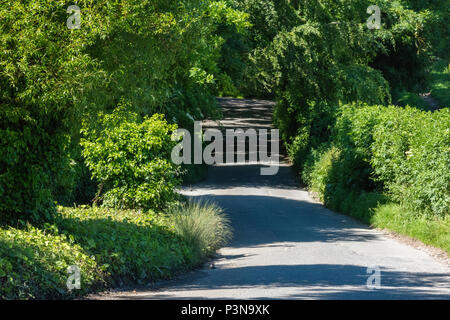 a beautiful shaded and sunny country lane in the summer weather and sunshine with shadows being cast across the tarmac and rays of sunshine from trees - Stock Photo