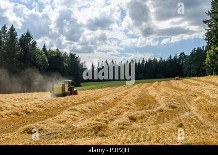 Tractor on field - harvesting the corn - Stock Photo