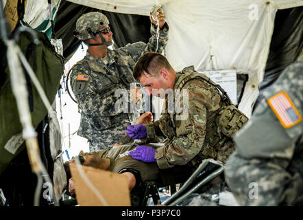 New York Army National Guard medics, assigned to Headquarters Co., 1st Battalion, 69th Infantry, triage a Soldier during a mass casualty exercise at the Army's Joint Readiness Training Center, Fort Polk, La., Saturday, July 16, 2016. More than 3,000 New York Army National Guard Soldiers deployed for a three week exercise at the Army's Joint Readiness Training Center, July 9-30, 2016. U.S. Army National Guard photo by Sgt. Harley Jelis. - Stock Photo