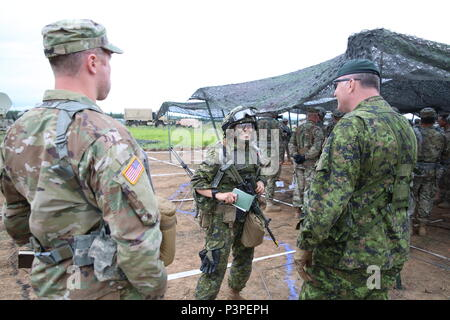 Canadian Army Col. Martin Frank, the Deputy Commander-Operations for U.S. Army Alaska, speaks to the Maj. Chelsea Braybrook, commander, Bravo Company, 1st Battalion, Princess Patricia's Canadian Light Infantry participating in #ArcticAnvil at Donnelly Training Area, Alaska July 20. - Stock Photo