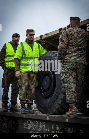 Norwegian Staff Sgt. Cteinar Norli, far left, and Capt. Andre Gjerde speak with U.S. Marine 2nd Lt. Bryan Hassett, right, a logistics officer with 2nd Transportation Support Battalion, Combat Logistics Regiment 2, 2nd Marine Logistics Group, after Marines loaded a 7-ton truck onto a railcar in Hell, Norway, May 9, 2017. The railhead operations were conducted as part of Strategic Mobility Exercise 17 (STRATMOBEX). STRATMOBEX focused on the operational readiness and mobility of equipment in Norway. - Stock Photo