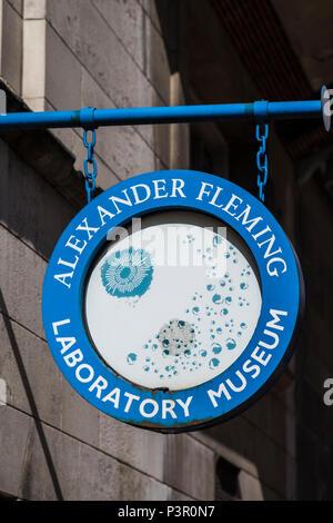 Alexander Fleming laboratory museum, St.Mary's hospital, London, England, U.K. - Stock Photo