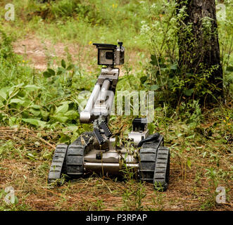An Explosive Ordnance Disposal (EOD) robot lifts its camera to view where it is going and what might lie ahead during the trianing at the Army's Joint Readiness Training Center, Fort Polk, La., Thursday,  July 28, 2016.  The National Guard Soldiers assigned to the 387th Explosive Ordnance Disposal (EOD) Co., based in Cape Cod, Mass., joined more than 5,000 Soldiers from other state Army National Guard units, active Army and Army Reserve troops as part of the 27th Infantry Brigade Combat Team task force, July 9-30, 2016. (U.S. Army National Guard photo by Capt. Amy Hanna.) - Stock Photo