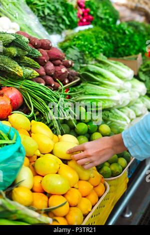 Woman choosing fruit at vegetable open air market - Stock Photo
