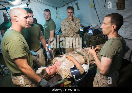 U.S. Navy Lt. Cmdr. Robert Oldt, an emergency physician with Special Purpose Marine Air-Ground Task Force-Crisis Response-Africa, explains the proper procedures for fluid resuscitation when intravenous access is not possible during a patient assessment drill, July 30, 2016. SPMAGTF-CR-AF Medical personnel were put to the test with realistic medical emergencies and taught to improvise during unforeseen circumstances to enhance mission readiness in the event of a future crisis. (U.S. Marine Corps Photo by Sgt. Kassie McDole.) - Stock Photo