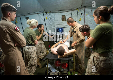U.S. Navy Lt. Cmdr. Robert Oldt, an emergency physician and Lt. Oscar Kizhner, a flight surgeon, demonstrate proper procedures for conducting a Focused Assessment with Sonogram in Trauma exam to U.S. Navy Corpsman, July 21, 2016. Special Purpose Marine Air-Ground Task Force-Crisis Response-Africa medical personnel conducted FAST exams using the medical tent, or Shock Trauma Platoon, containing a surgical suite, called a Forward Resuscitative Surgical System, which makes it possible for forward deployed doctors to perform lifesaving surgical procedures in the event of a crisis. (U.S. Marine Cor - Stock Photo