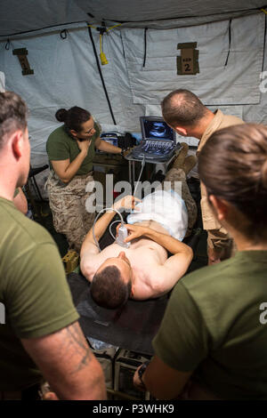 U.S. Navy Lt. Cmdr. Robert Oldt, an emergency physician explains proper positioning for identifying a heart on a patient using the Focused Assessment with Sonogram in Trauma exam to U.S. Navy medical personnel, July 21, 2016. Special Purpose Marine Air-Ground Task Force-Crisis Response-Africa medical personnel conducted FAST exams using the Forward Resuscitative Surgery System-Shock Trauma Platoon to enhance mission readiness in the event of a future crisis. FAST is a rapid bedside ultrasound examination performed by surgeons, emergency physicians and certain paramedics as a screening test for - Stock Photo
