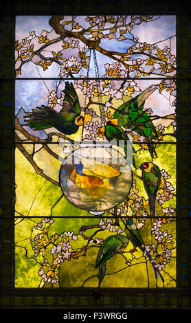 Parakeets and Gold Fish Bowl, Louis Comfort Tiffany, circa 1893, Museum of Fine Arts, Boston, Mass, USA, North America - Stock Photo