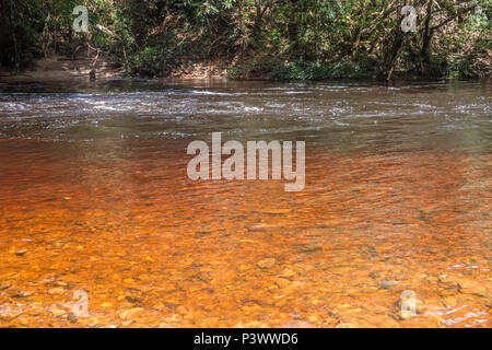 A beautiful view of Tahan River in the national park Taman Negara, Pahang, Malaysia. At the shallow part of the river the different shades of brown... - Stock Photo