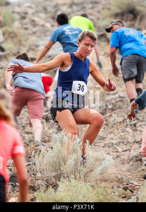 Athletes compete in a foot race and climb up 'S' Mountain (Tenderfoot Mountain) during the annual Fibark Festival; Salida; Colorado; USA - Stock Photo