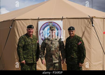 From left, Canadian Army Col. Martin Frank, the Deputy Commander-Operations for U.S. Army Alaska, Col. Scott Mitchell, commander, 196th Infantry Brigade, and Maj. Gen. J. C. G. Juneau, deputy commanding general royal Canadian Army pose for a photo during Rotation 16-02 Arctic Anvil. - Stock Photo