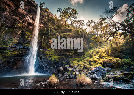 Lone Creek Waterfall in Mpumalanga, South Africa, with sunlight streaming through foliage over mossy banks - Stock Photo