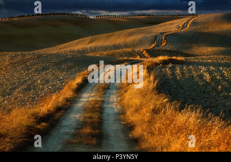 Fields in the area of San Quirico d'Orcia. Tuscany. Italy - Stock Photo