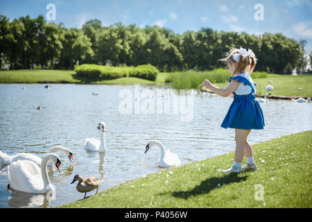 Little baby girl walking in the park near and looking at the swans. - Stock Photo