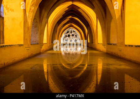 The Baths of Lady Mary of Padilla, a rainwater tank pool under the Alcazar palace, Seville, Andalusia, Spain. - Stock Photo