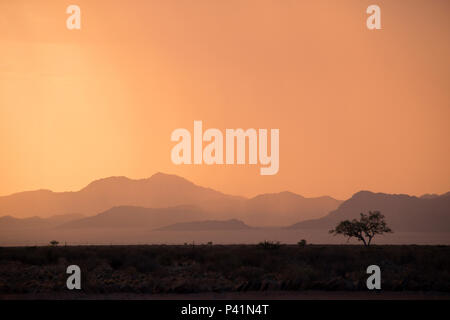 Rain starts to fall at sunset over the rugged desert landscape near the famous red sand dunes at Sossusvlei, Namibia. - Stock Photo