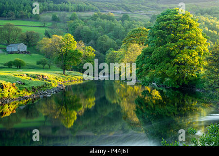 Mirror images on water & riverbank trees reflected on calm, still, scenic,  River Wharfe on sunny evening - Wharfedale, North Yorkshire, England, UK. - Stock Photo