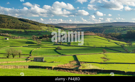 Under dramatic blue sky, long-distance picturesque view to Wharfedale (isolated barns & green pasture in sunlit valley) - Yorkshire Dales, England, UK