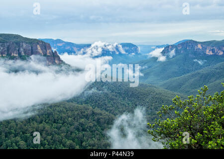 Cliff Top Track View. Blue Mountains in Australia. - Stock Photo