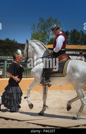 Spanish Flamenco dancing with horse and female dancer - Stock Photo