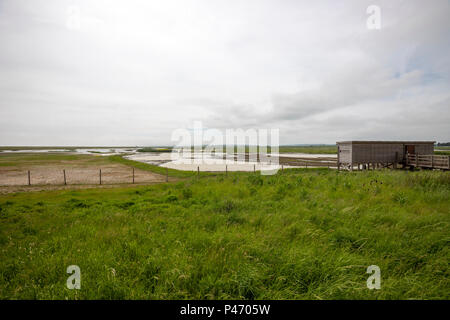 Wildlife Hide in Rye Harbour, Rye Harbour nature reserve, East Sussex, England, United Kingdom - Stock Photo