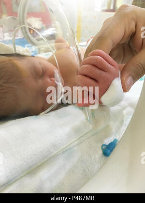 Patient new born baby in incubator at hospital. - Stock Photo