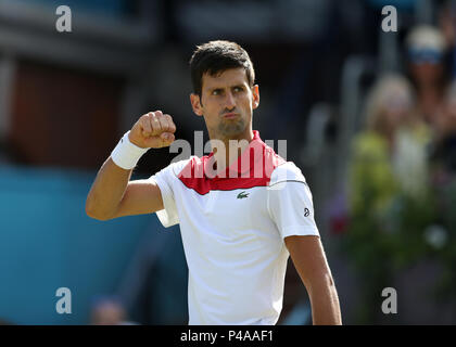 Queens Club, London, UK. 21st June, 2018. The Fever Tree Tennis Championships; Novak Djokovic (CRO) celebrates towards his coaches after winning the first set against Dimitrov Credit: Action Plus Sports/Alamy Live News